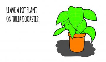 Leave a pot plant on their doorstep, Kind gestures
